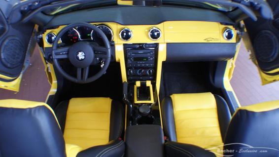 Mustang Custom Leder